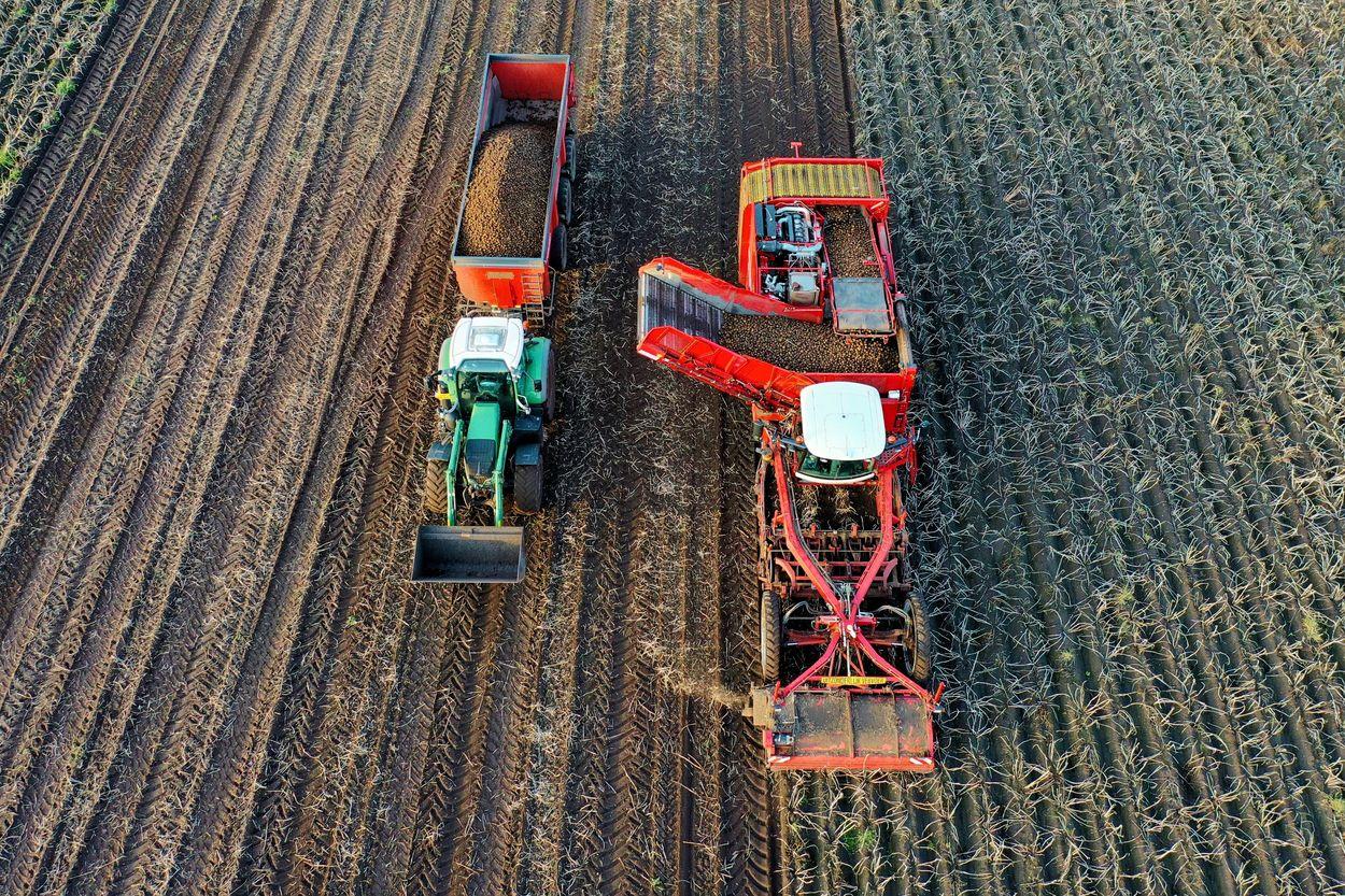 Afbeelding van Gaat de coronacrisis voor duurzame landbouw zorgen?