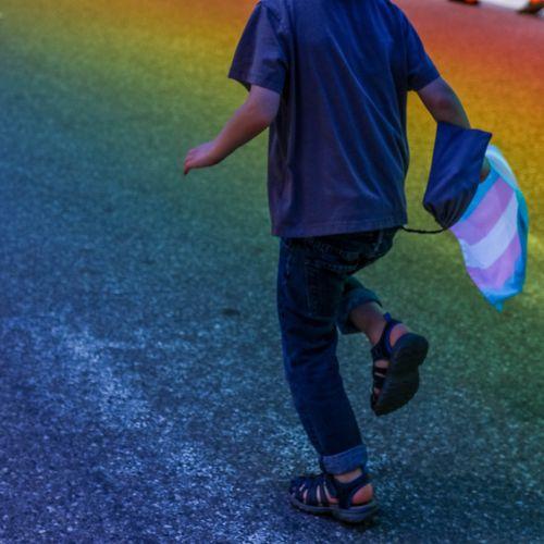 Afbeelding van Wat zijn de gevolgen van de 'anti-transgenderwet' in Hongarije?
