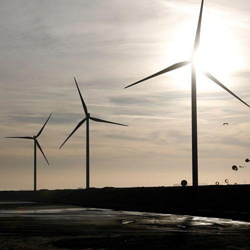 Afbeelding van Waarom lukt het Nederland niet om klimaatdoelstellingen te halen?